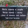 Polaków w Orszy nie rozstrzeliwano?