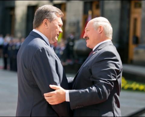 Prezydenci Ukrainy i Białorusi Wiktor Janukowycz i Aleksander Łukaszenko, fot.: gazetaby.com